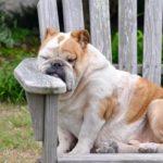 昼寝や仮眠ができる場所!おすすめ度の高いスポット14選【保存版】